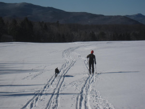 Cross-country skiing in Lake Placid.