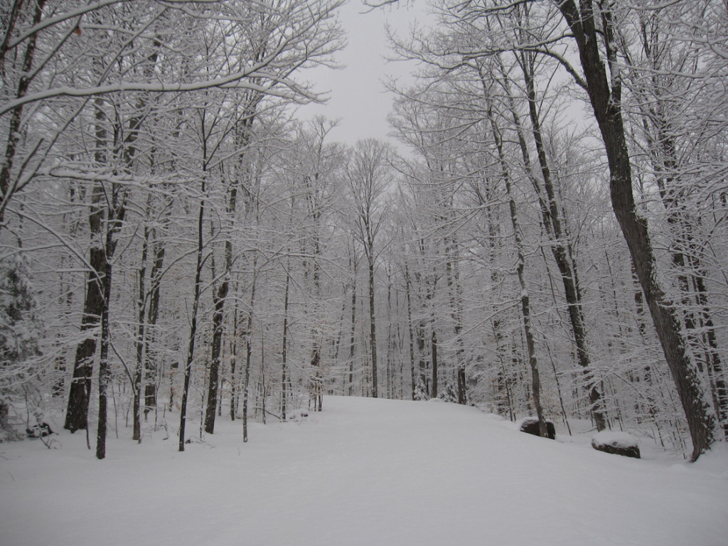 February 2012 Snow at Adirondack Lifestyle HQ