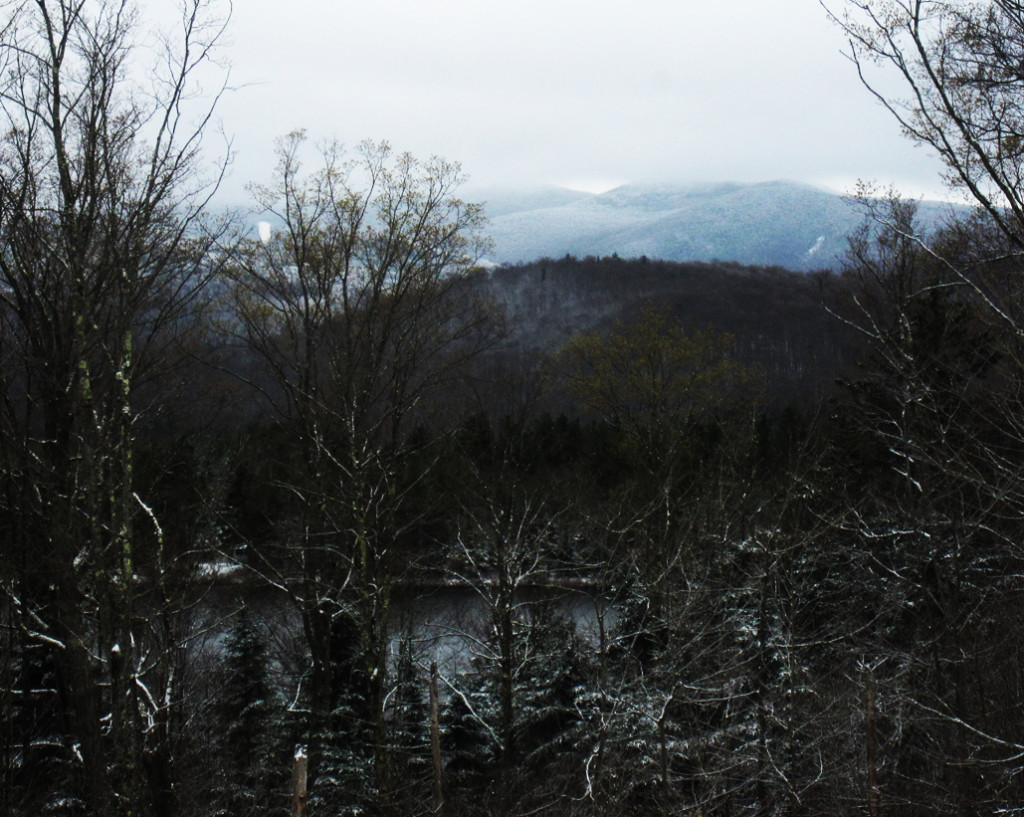 Adirondack spring buds and fresh snow on balsams.
