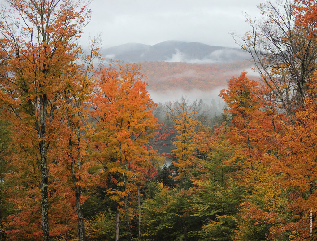Adirondack Lifestyle Fall Foliage 10-03-12