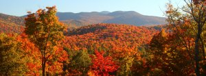 Fall Foliage in the Adirondack Mountains