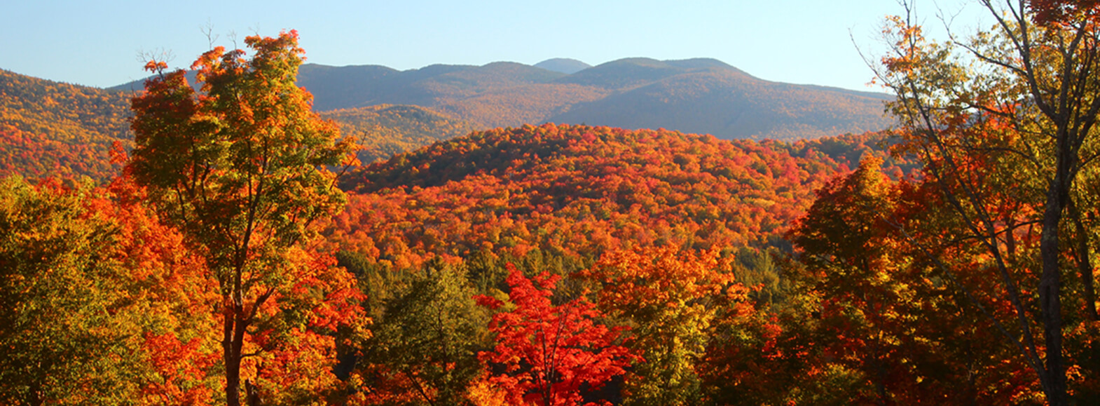 Vibrant fall foliage lights up the Adirondack Mountains.